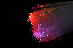 Red Fiber Optic. Computer Cables Stock Image