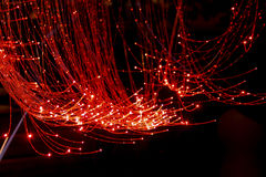 Red Fiber Optic Cable. Bundle with black background Stock Image