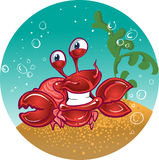 Red fiddler crab. Fun vector red fiddler crab Royalty Free Stock Images
