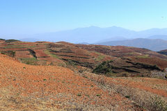 Red field and landscape in Yunnan,china Royalty Free Stock Photography