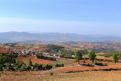 Red field and landscape in Yunnan,china Royalty Free Stock Image