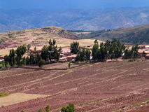 Red fields. Fields with red earth in the peruan highlands with mountain skyline Stock Photo