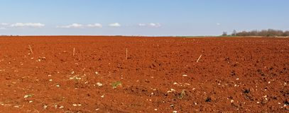 Red fields countryside panorama Royalty Free Stock Photos