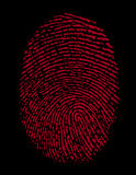 Red Fingerprint Identity Crime. Very detailed Fingerprint, available as EPS vector or JPG Royalty Free Stock Images