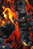 Red fire. And coal close up stock images