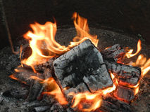 Red fire and black coals Stock Images