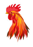 Red Fire Cock. Fire red rooster head Stock Photography