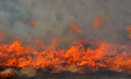 Red fire and dense smoke Royalty Free Stock Image