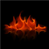 Red Fire Flame Bonfire Isolated on Background. Vector Red Fire Flame Bonfire  Isolated on Background Stock Photo