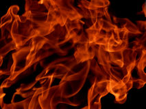 Red fire flames on a black background Royalty Free Stock Photography