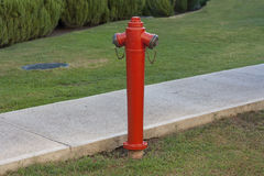 Red fire hydrant against green lawn photo Stock Images