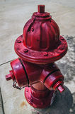 Red fire hydrant Stock Photography