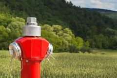 Red fire hydrant at the edge of a green field. Red fire hydrant at the edge of a green field Royalty Free Stock Photos