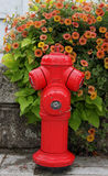 Red Fire Hydrant Stock Images