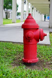 Red Fire hydrant with in grass Royalty Free Stock Photos