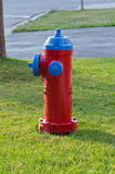 Red fire hydrant. A red fire hydrant on a green lawn background Stock Photo