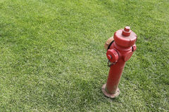Red fire hydrant isolated in a grass Royalty Free Stock Image