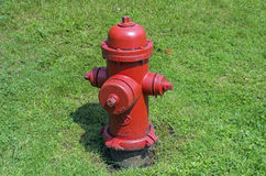 Red fire hydrant on a lawn. Bright red fire hydrant on the background of green grass Royalty Free Stock Photography
