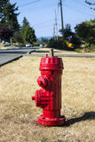 Red fire hydrant on the street Royalty Free Stock Photography