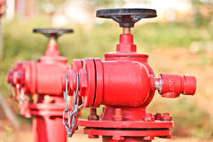 Red fire hydrant in students campus. Kunming Stock Photography