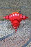 Red Fire Hydrant on Traditional style Portuguese Calcada Pavement Royalty Free Stock Photography