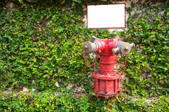 Red fire hydrant on the tree wall background. Royalty Free Stock Photos