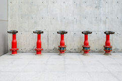 Red fire hydrants. Five red fire hydrants on the gray background Stock Photos