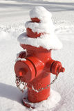 Red Fireplug in the Snow. Vertical image of a bright red fire hydrant covered with and standing in a large amount of snow Royalty Free Stock Photography