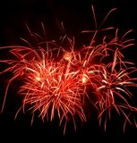 Red Firework Stock Image