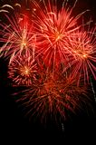 Red firework. Natural firework on black background Royalty Free Stock Images