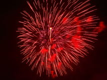 Red fireworks in night sky. Blood-red firework explosion into a black night sky Stock Photos
