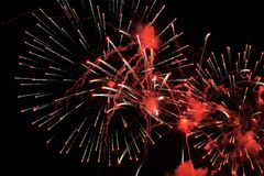 Red fireworks in dark sky Royalty Free Stock Photo