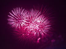 Red fireworks at night. Red fireworks explode at night Royalty Free Stock Photos