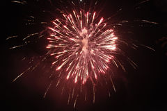 Red  fireworks in sky at night Stock Image