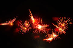 Red fireworks in summer Royalty Free Stock Images