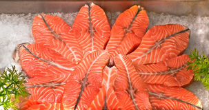 Red fish Royalty Free Stock Images