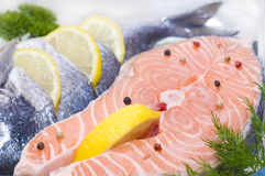 Red fish. Trout with lemon and spices Stock Image