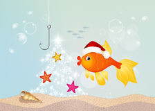 Red fish celebrate Christmas. Illustration of red fish celebrate Christmas Royalty Free Stock Image