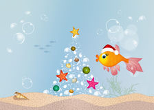 Red fish celebrate Christmas. Illustration of red fish celebrate Christmas Stock Photography