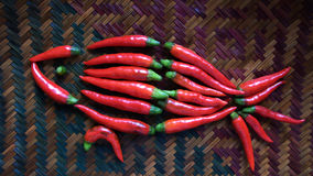 Red fish consist of chillies Stock Photography