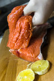 Red fish Stock Photography