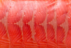 Red fish fillet Royalty Free Stock Photography