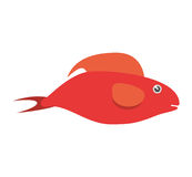 Red fish half aquatic environment. Illustration eps 10 Royalty Free Stock Images