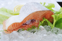 Red fish on ice Royalty Free Stock Photo