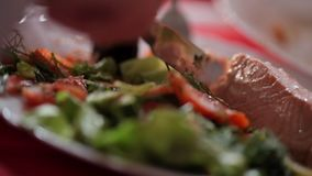 Red fish knife. On a plate stock footage