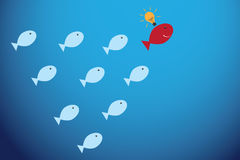 Red fish with light bulb and blue fishes, leadership and business concept. Vector and illustration Royalty Free Stock Image