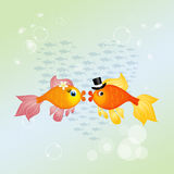 Red fish in love. Illustration of red fish in love Stock Images