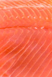 Red fish meat Royalty Free Stock Photo