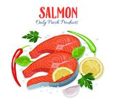 Red fish salmon pieces with. Lemon, pepper, spices and herbs. Healthy food cooking concept . Vector illustration Stock Photography