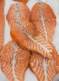 Red fish salmon trout. Showcase in the supermarket red fish salmon trout Royalty Free Stock Images